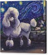 Starry Night Poodle Acrylic Print