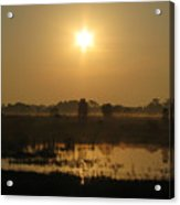 Starry Sunrise Acrylic Print