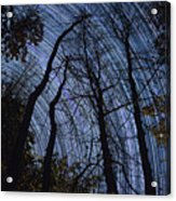 Stars And Silhouettes Acrylic Print