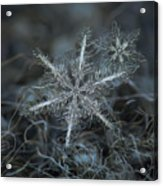 Stars In My Pocket Like Grains Of Sand Acrylic Print by Alexey Kljatov