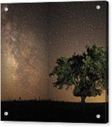 Stars Shine Brightly Acrylic Print