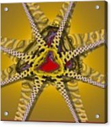 Starz Acrylic Print