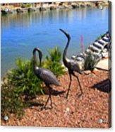 Statueque Cranes Acrylic Print
