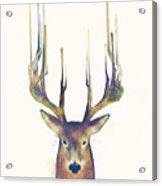 Steadfast Acrylic Print