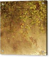 Steam Mist Acrylic Print