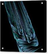 Steel Feathers Acrylic Print
