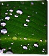 Steel Rain Acrylic Print