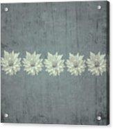 Steely Gray Bluer Version Acrylic Print