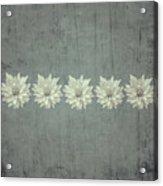Steely Gray Rustic Flower Row Acrylic Print