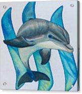 Steemit Dolphin Acrylic Print