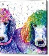 Stella And Violet Acrylic Print