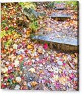Step Into Fall Acrylic Print