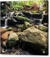Stepping Cascade - Leura, Blue Mountains, Australia. Acrylic Print