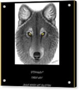 Steppinwolf Acrylic Print