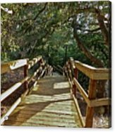 Steps To Adventure Acrylic Print
