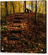 Steps To Bench Acrylic Print