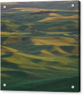 Steptoe Butte 13 Acrylic Print