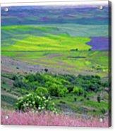 Steptoe Butte Acrylic Print