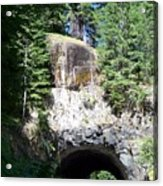 Stevens Canyon Road Tunnel Acrylic Print by Charles Robinson
