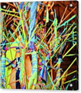 Stick Of Color Acrylic Print
