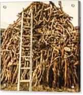 Sticks And Ladders Acrylic Print