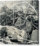 Sticks And Stones 2782 Acrylic Print