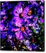 Still Life 0311311 Acrylic Print