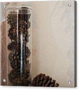 Still Life Of A Glass Jar Of Pine Cones Acrylic Print