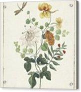 Still Life Of Flowers, Machtelt Moninckx, C. 1600 - C. 1687 Acrylic Print