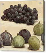Still Life Of Grapes And Figs Acrylic Print