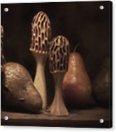 Still Life With Mushrooms And Pears II Acrylic Print