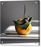 Still Life With Orange And Grid Lines. Acrylic Print