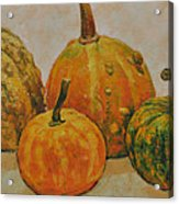 Still Life With Pumpkins Acrylic Print