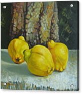 Still Life With Quinces Acrylic Print