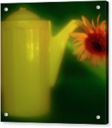 Still Life With Sunflower And Coffee Pot. Acrylic Print