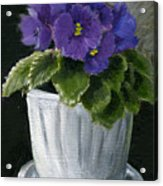 Still Life With Violet Acrylic Print