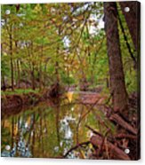 Still Waters In The Evening Acrylic Print