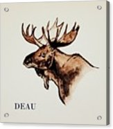 Stockholms' Moose Acrylic Print