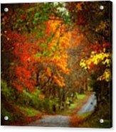 Stone Bridge Road Acrylic Print by Joyce Kimble Smith