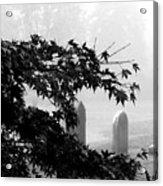 Stone Cold Fog Acrylic Print