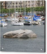 Stone Iron Chain And Seagull Acrylic Print