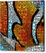 Stone Rock'd Clown Fish 2 - Sharon Cummings Acrylic Print