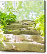 Stone Stairs Acrylic Print by Stefano Piccini