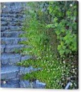 Stone Steps Acrylic Print