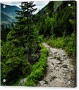 Stone Walkway Into The Valley Acrylic Print