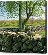 Stone Wall In Rhode Island Acrylic Print