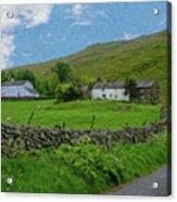 Stone Wall Lake District - P4a16012 Acrylic Print