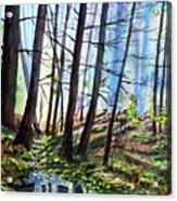 Stoneybrook Acrylic Print