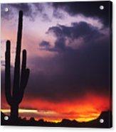 Storm Clouds Pass Over A Saguaro Catus Acrylic Print