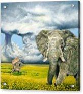 Storm Field Acrylic Print